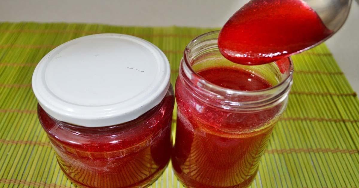 Что можно приготовить из замороженной калины в домашних условиях? Что можно сделать из ягод калины: рецепты