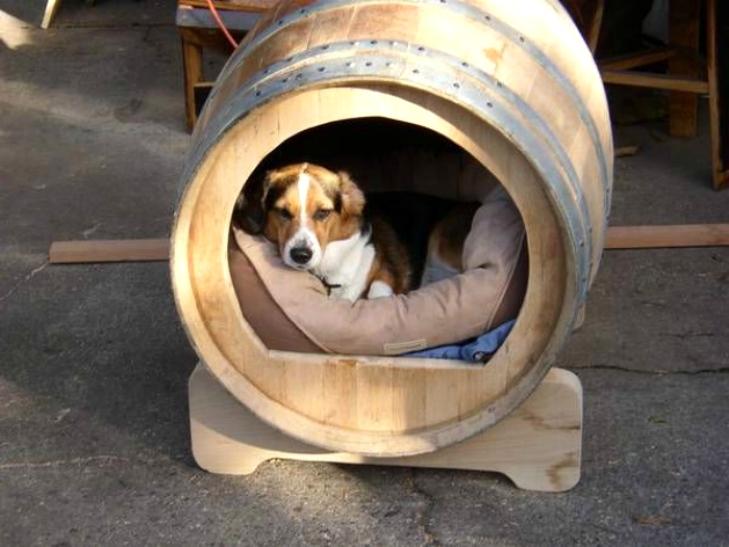Собачья будка в бочке